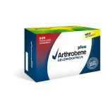 ARTHROBENE plus Gelenkskapseln